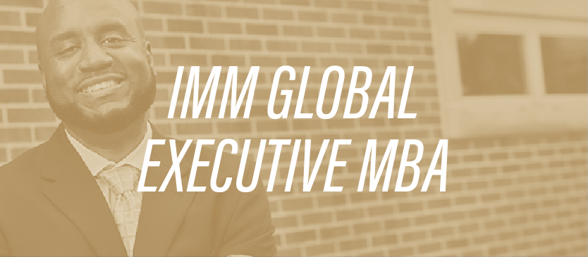 IMM Global Executive MBA